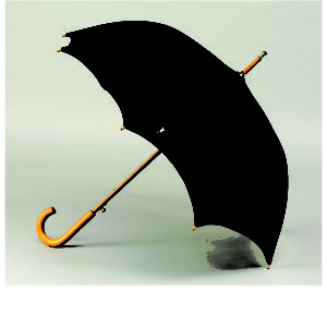 "48"" Automatic Open Wood Handle Fashion Umbrella"